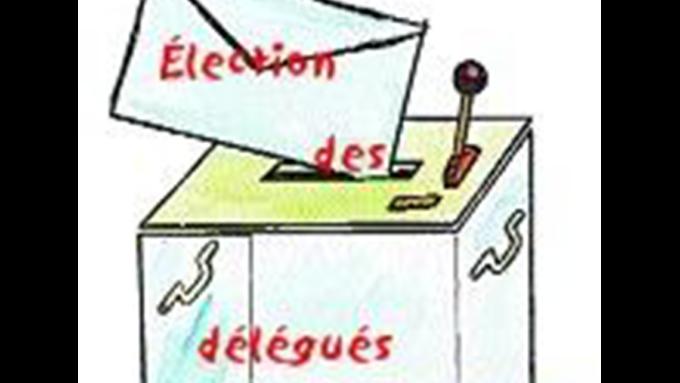 election_delegue.png